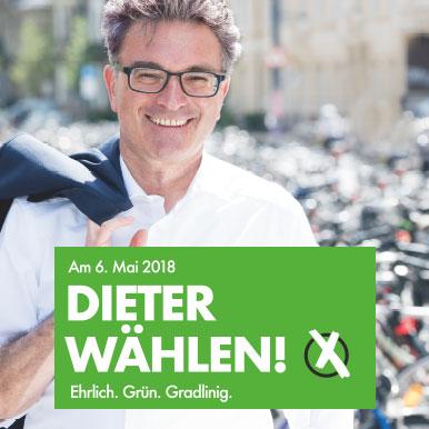 OB-Wahl Freiburg, Dieter Salomon